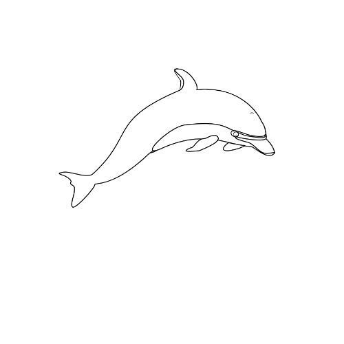 Kolorowanka Delfin Kolorowanka Do Wydruku Darmowe