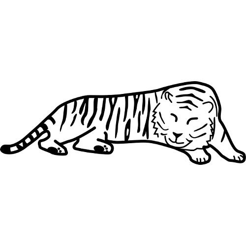 Kolorowanka Kot Lezacy Tygrys Kolorowanka Do Wydruku Darmowe