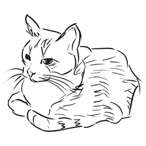 Kolorowanka Kot Leżący Kot Kolorowanka Do Wydruku Darmowe