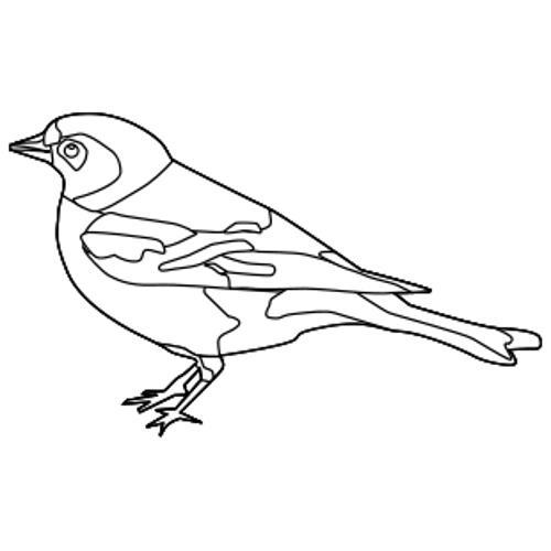 Kolorowanka Maly Ptak Kolorowanka Do Wydruku Darmowe