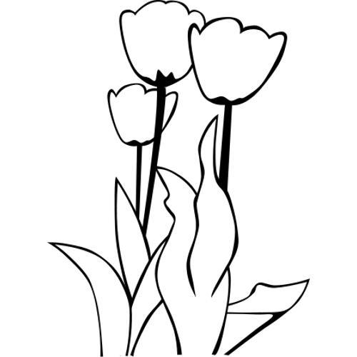 foto de Kolorowanki bukiety trzy tulipany kolorowanka do wydruku darmowe