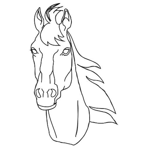 Kolorowanki Konie Glowa Konia Kolorowanka Do Wydruku Darmowe