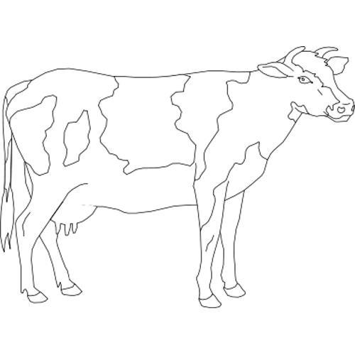 Kolorowanki Krowa Kolorowanka Do Wydruku Darmowe