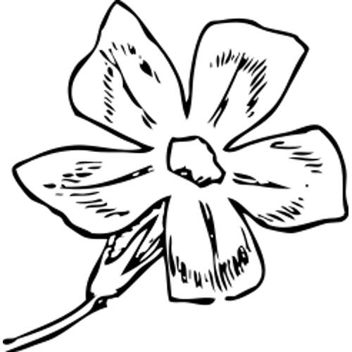 Kolorowanki Kwiaty Kwiatek 80 Kolorowanka Do Wydruku Darmowe