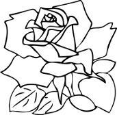 Kolorowanki Kwiaty Darmowe Malowanki Do Druku