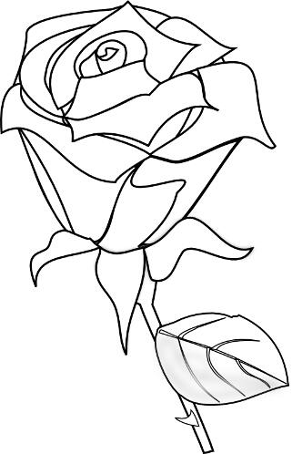 Kolorowanki Kwiaty Roza Kolorowanka Do Wydruku Darmowe