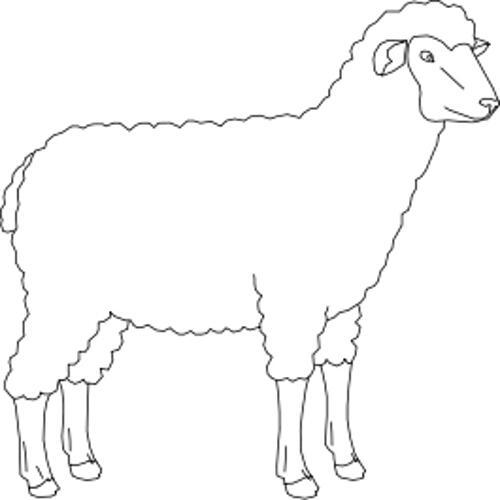 Kolorowanki Owce Owca Kolorowanka Do Wydruku Darmowe