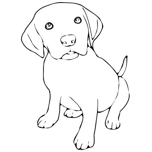 Kolorowanki Pies Szczeniak 7 Kolorowanka Do Wydruku Darmowe