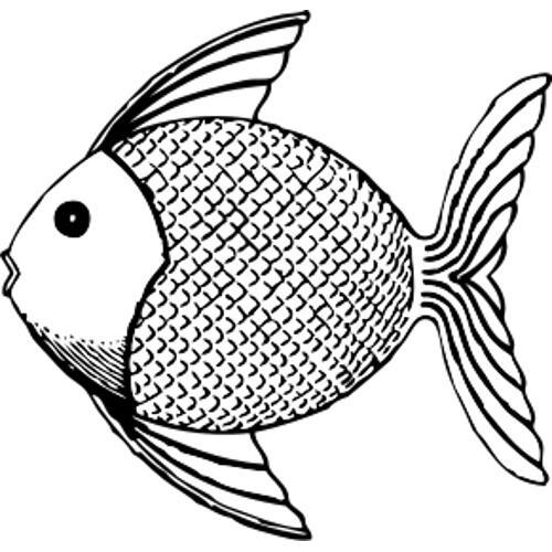 Kolorowanki Ryby Tropikalna Ryba 2 Kolorowanka Do Wydruku Darmowe