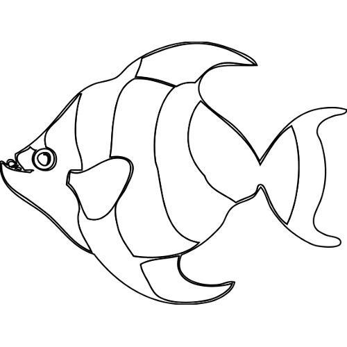 Kolorowanka Tropikalna Ryba Kolorowanka Do Wydruku Darmowe